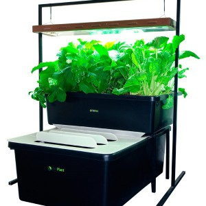 kit-aquaponie-fishplant-family-unit