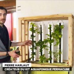 aquaponie-pierre-harlaut