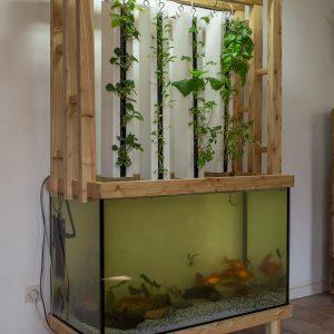 permacube-zipgrow-aquaponie