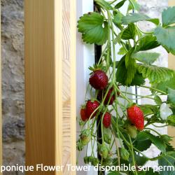 flower-tower-3